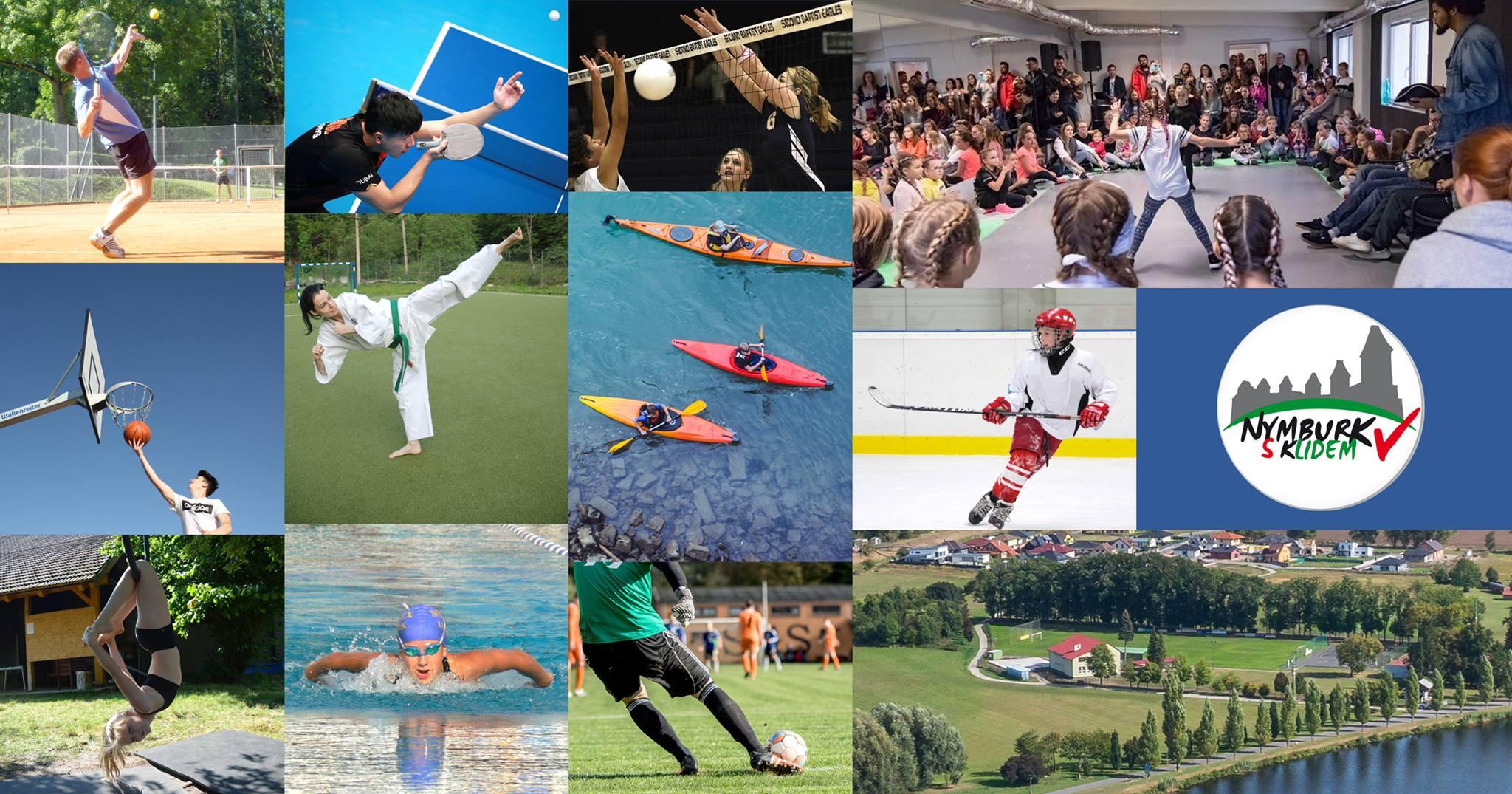Den pro sport